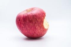 Czerwony jabłko z owocową ochrony pianą Obraz Royalty Free
