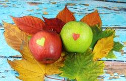 Czerwony jabłko z zielonym sercem i zieleni jabłkiem z czerwonym sercem Obrazy Stock