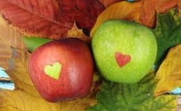 Czerwony jabłko z zielonym sercem i zieleni jabłkiem z czerwonym sercem Zdjęcia Stock