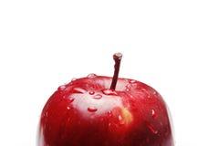 czerwony jabłczana Obrazy Royalty Free