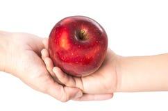 Czerwony jabłko 21 Zdjęcie Stock