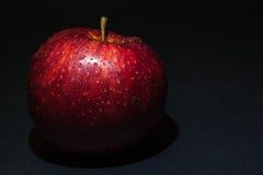 Czerwony jabłko z kroplami rosa na czarnym tle Obrazy Royalty Free