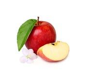 Czerwony jabłko z kwiatem i plasterkiem. Obraz Royalty Free