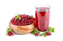 Czerwony jagodowy sok Zdjęcie Stock
