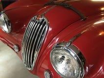 Czerwony Jaguar zdjęcia stock