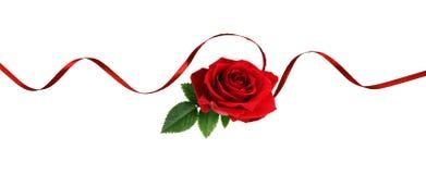 Czerwony jedwabniczy faborku i róży kwiat Zdjęcia Royalty Free
