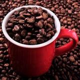 Czerwony kawowy kubek wypełniający z fasoli zbliżenia kwadrata formatem Fotografia Stock