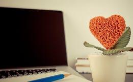 Czerwony Kierowy kwiatu garnek dla romansu w biurze Obrazy Stock