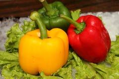 Czerwony kolor żółty i zielony pieprz na warzywach Obrazy Royalty Free