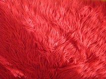 Czerwony kostrzewiasty dywan Fotografia Royalty Free
