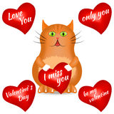 Czerwony kot z czerwonym sercem Obrazy Royalty Free