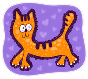 Czerwony kot z dużymi oczami Fotografia Stock