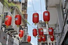 Czerwony kota lampion Fotografia Stock