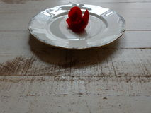Czerwony kwiat na talerzu Zdjęcie Royalty Free