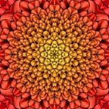 Czerwony kwiatu kalejdoskop Ilustracja Wektor