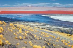 Czerwony Laguna Czerwony jezioro tam jest wiele kolorami, czerwień, kolor żółty, błękit, Zdjęcia Stock