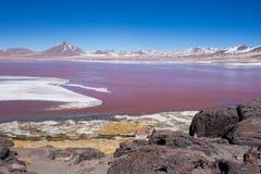 Czerwony laguna turysty krajobraz Bolvia Obrazy Royalty Free