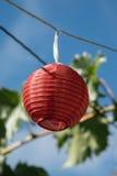 Czerwony lampion obraz stock