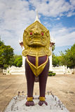 Czerwony Leo Fotografia Royalty Free