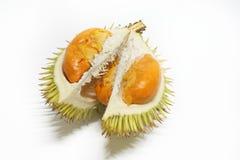 Czerwony lokalny durian dalit Obraz Stock