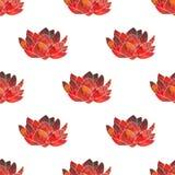 Czerwony lotos Bezszwowy wzór z pozaziemskim lub galaxy Zdjęcia Royalty Free