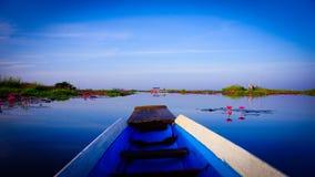 Czerwony Lotosowy Udon thani Tajlandia zdjęcie stock