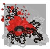 czerwony makowa Obraz Stock