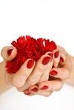 Czerwony manicure i czerwony kwiat Obrazy Royalty Free
