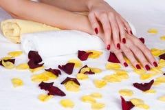 Czerwony manicure i różani płatki Obraz Stock
