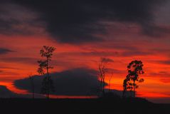 czerwony marzeń Fotografia Royalty Free