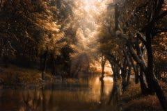 Czerwony marzycielski krajobraz z jeziorem i światłem słonecznym Obrazy Stock