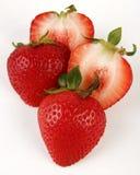 czerwony materiał siewny roślin truskawki Zdjęcia Royalty Free