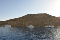 czerwony morze Zdjęcia Royalty Free
