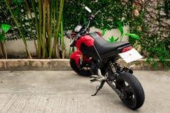 Czerwony motocykl parkujący blisko ściany z roślinami fotografia stock