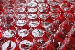 Czerwony napój w szkle Obrazy Stock