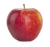 czerwony odosobnione white jabłko zdjęcie stock