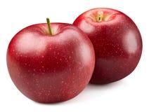 czerwony odosobnione white jab?ko zdjęcia royalty free