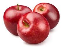 czerwony odosobnione white jab?ko zdjęcie royalty free