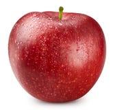 czerwony odosobnione white jab?ko obraz stock