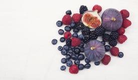 Czerwony owoc bohatera chodnikowiec Fotografia Stock