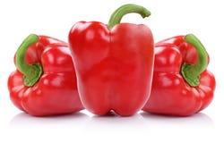 Czerwony papryk papryk warzywo odizolowywający na bielu Zdjęcie Royalty Free