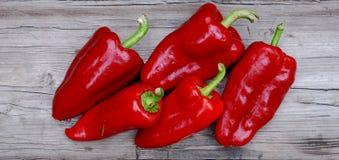 czerwony papryki Fotografia Stock