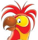 czerwony papuzia Obrazy Royalty Free