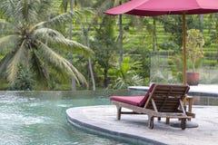 Czerwony parasol i plażowi krzesła wokoło plenerowego pływackiego basenu w hotelu i kurortu z drzewkiem palmowym na wyspie Bali,  Obraz Royalty Free