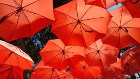 Czerwony Parasol Sunshade Zdjęcie Royalty Free