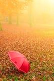 Czerwony parasol w jesień parku na liściach dywanowych Fotografia Stock