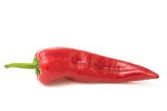 czerwony pepper white Zdjęcie Stock