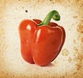 Czerwony pieprz Fotografia Stock