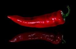 Czerwony pieprz odbijający w zmroku Fotografia Royalty Free