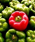 czerwony pieprzowa zdjęcia stock